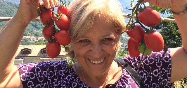 Re Fiascone, un pomodoro che cresce sano e controllato